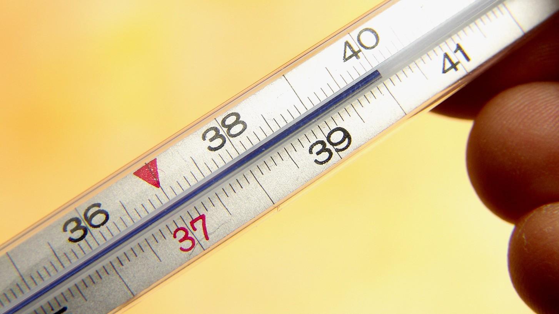 Температура 39 к новому году