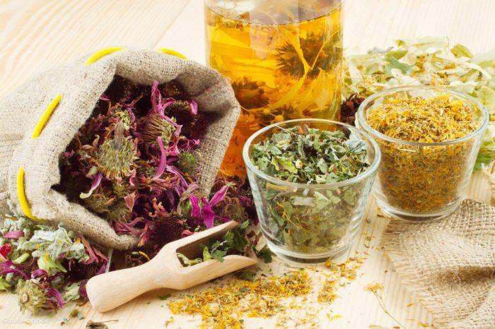 лечение энтеробиоза народными средствами