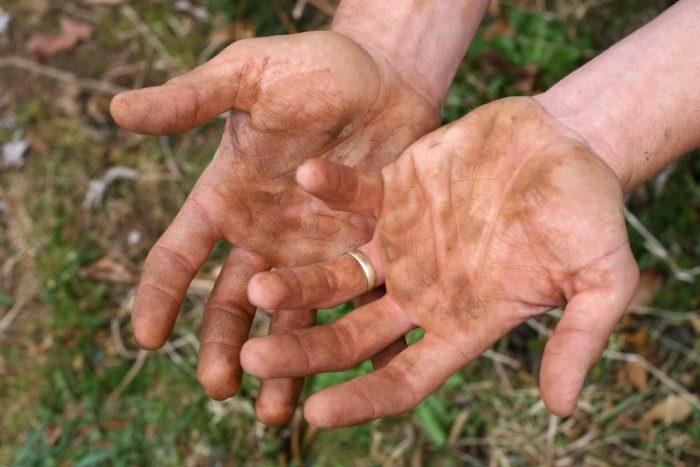 плохо вымытые руки